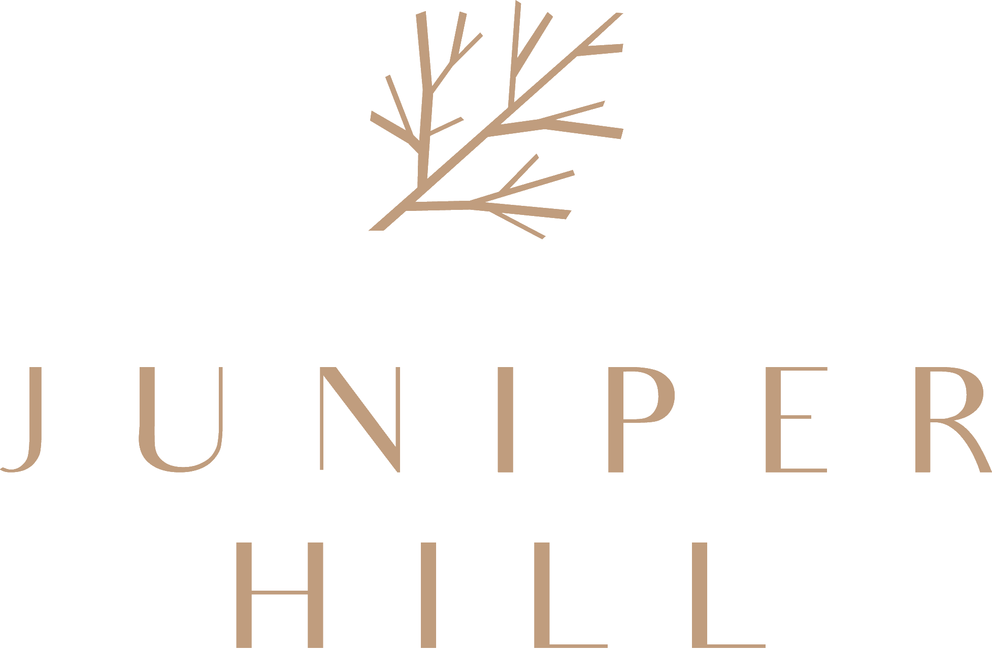 Juniper Hill | Juniper Hill Showflat